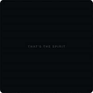 Bring Me the Horizon - That's The Spirit [2015]