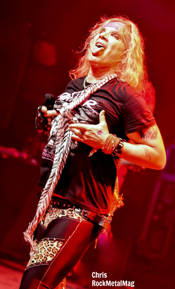 costeel-panther-14