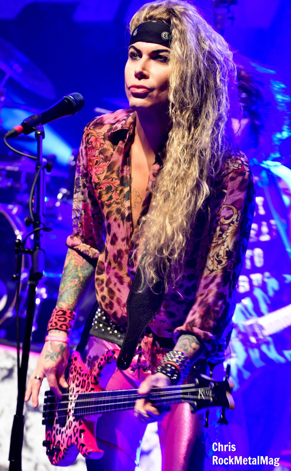 costeel-panther-4