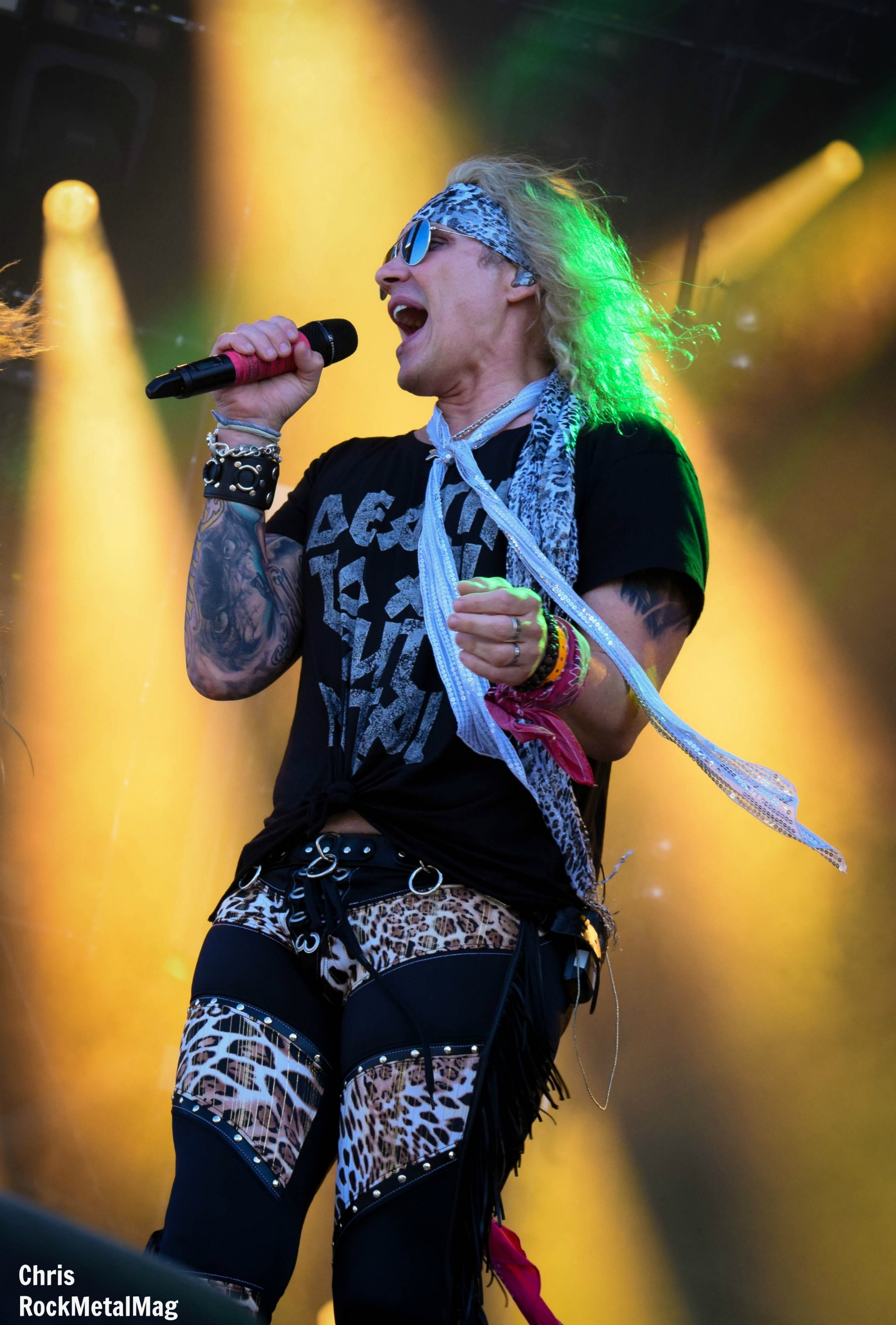 coSTEEL PANTHER