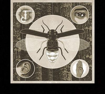 Jerry Cantrell Nouvel album