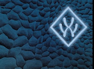 CHRONIQUE : Album Vol 2 de WELCOME-X
